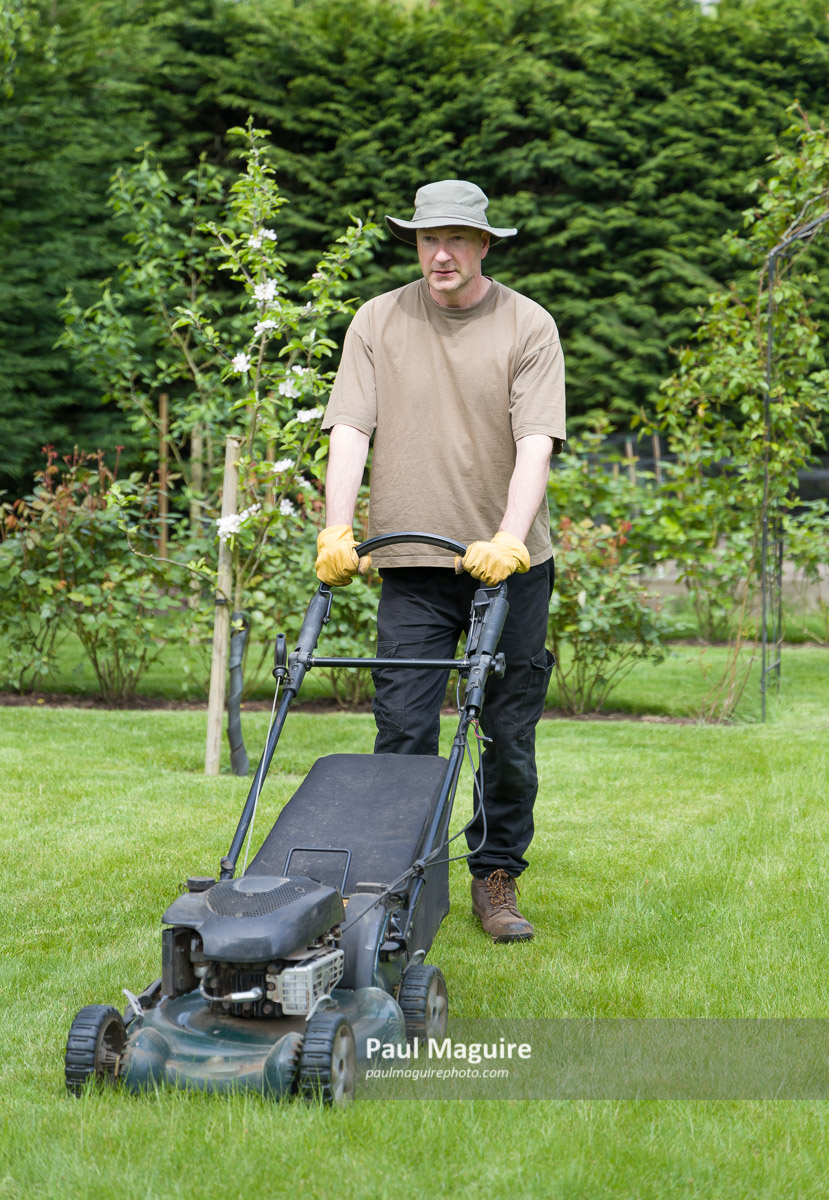 Senior man mowing the lawn stock photo. Image of nature